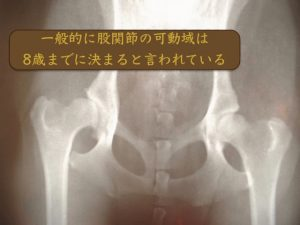 股関節の可動域は